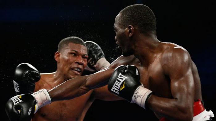 the best boxer in the world