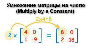 Умножение дроби на матрицу