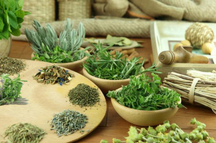 эффективное похудение на травах
