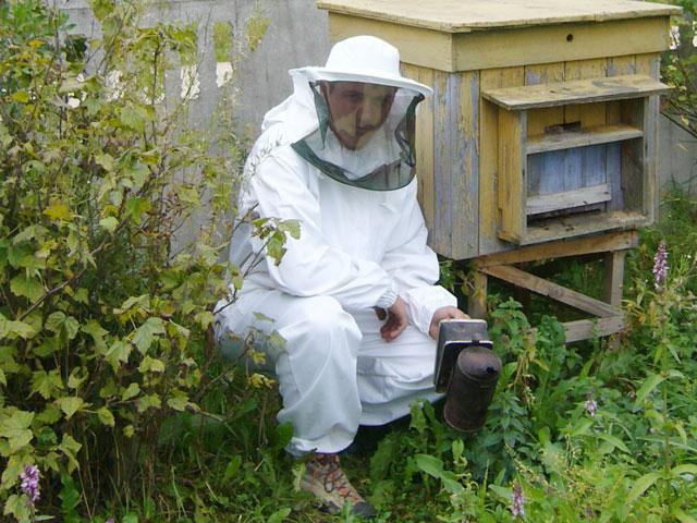 how to start beekeeping from scratch