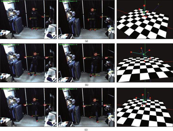 motion kinematics