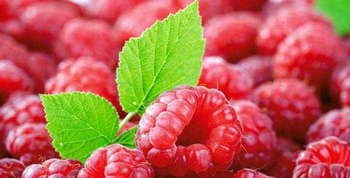 ягоды красного цвета