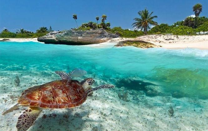 Zanzibar Island reviews