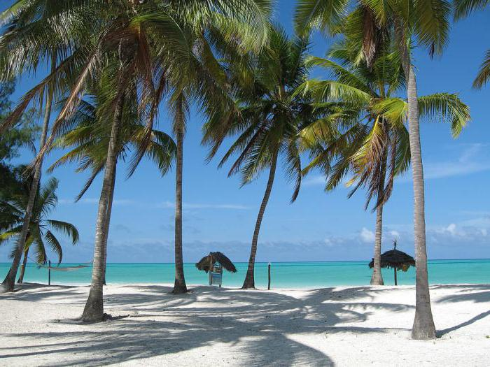 Africa Zanzibar Island