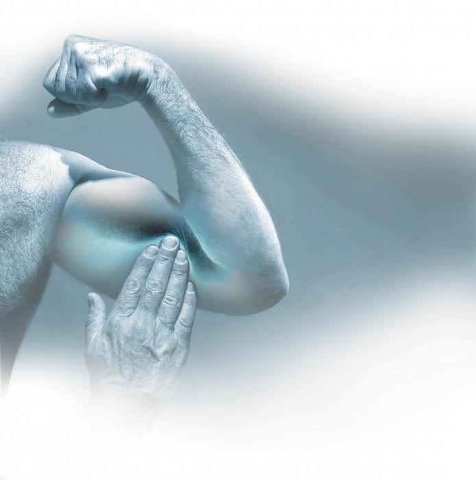 Cоматотропный гормон функциональные особенности показатели нормы причины отклонений