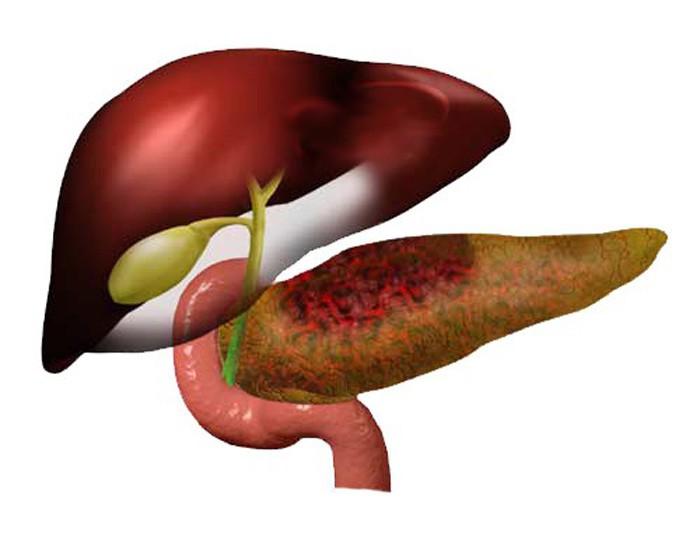 pancreatitis attack treatment