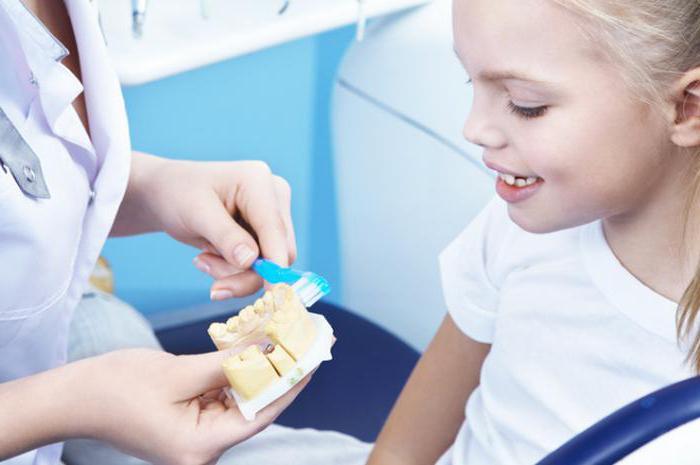 профессия зубной врач