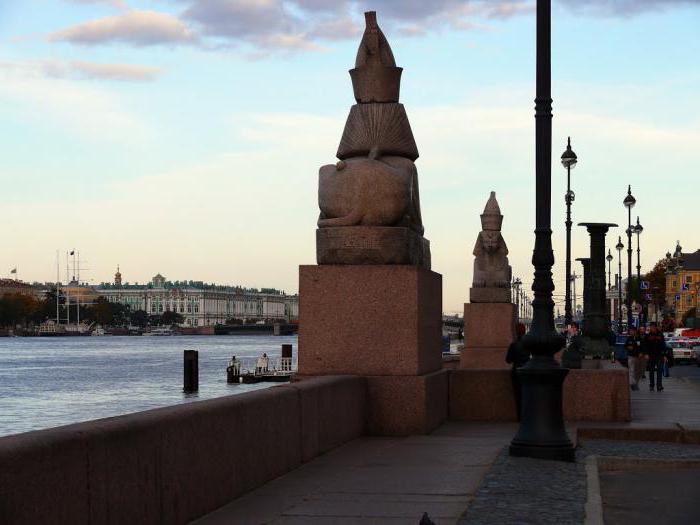 Sphinxes in St. Petersburg on University