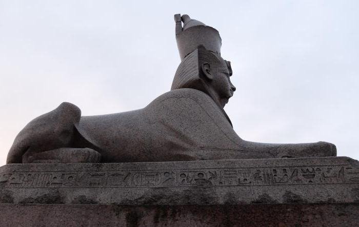 How many sphinxes in St. Petersburg