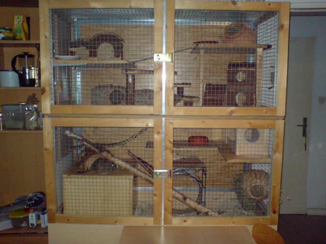 Degu Chinchilla Cages