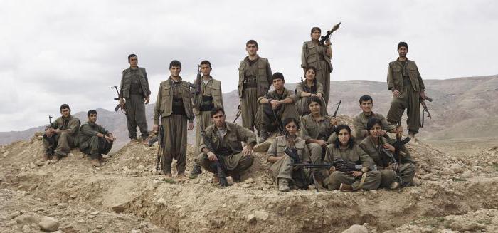 activity of the Kurdistan Workers' Party of Turkey