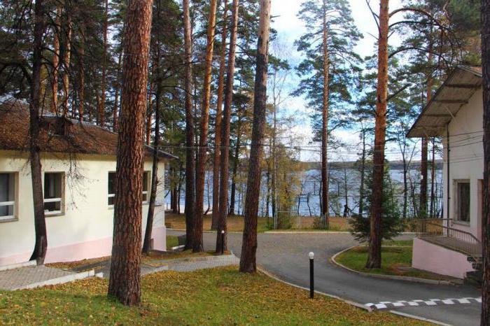 recreation center in the Urals in the summer