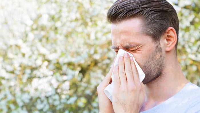 рузам лекарство от аллергии цена