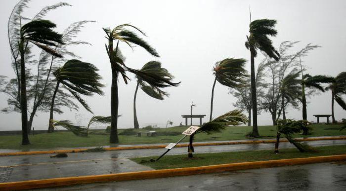 why dream strong wind hurricane