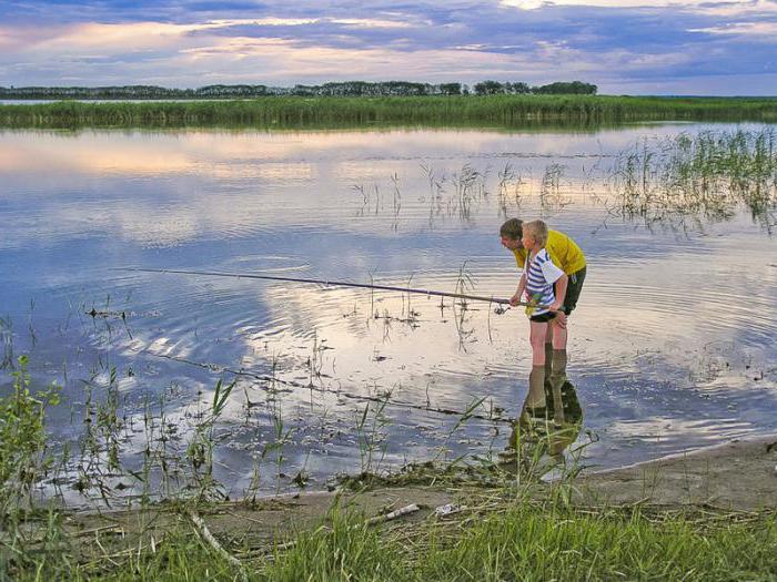 ловля толстолоба в июне на пруду