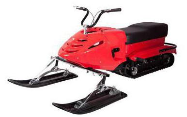 snowmobile burlak