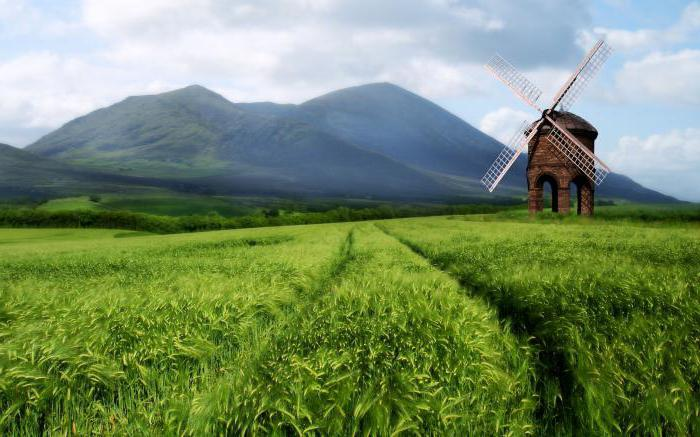 dream house in the field