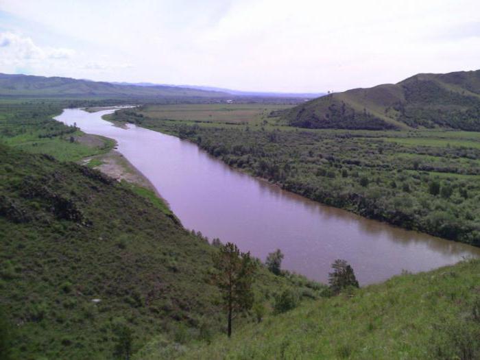 Tributaries of the river Selenga