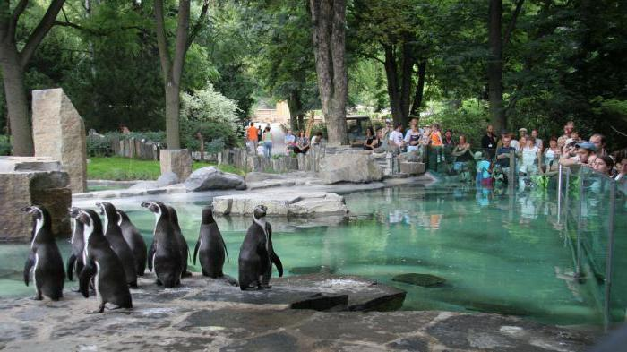 zoo in prague how to get