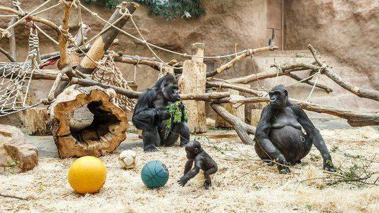 zoo in prague reviews