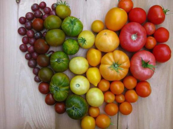 прошла любовь завяли помидоры стих