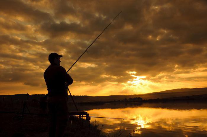 рыбалка светлые горы цены отзывы контакты