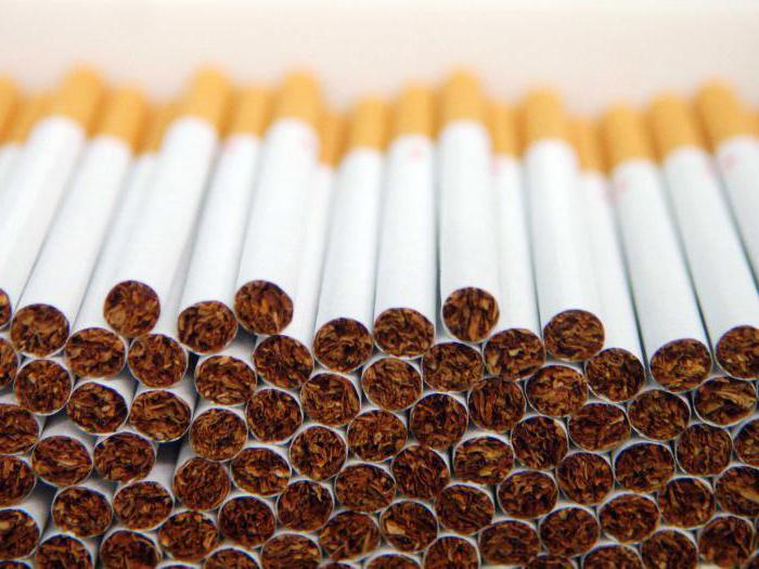 Сколько блоков сигарет в коробке винстон