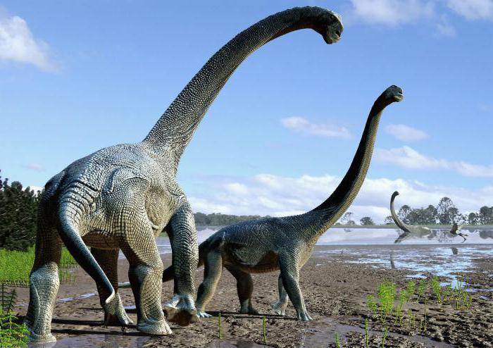 why dream dinosaur