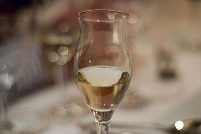 alcohol drink grappa