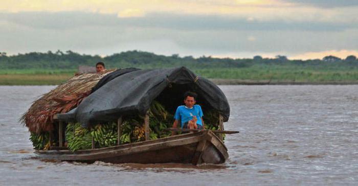 хозяйственное использование реки амазонка человеком