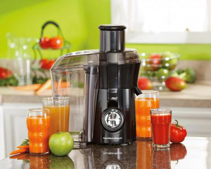 professional fruit and vegetable juicer