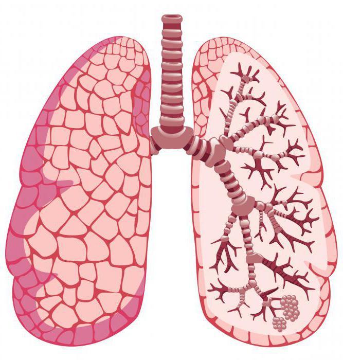 средства при приступе бронхиальной астме