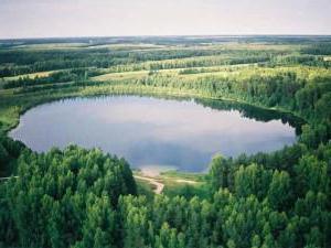 denegkin stone reserve where is