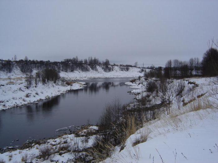 Rest on Vazuzskom Reservoir