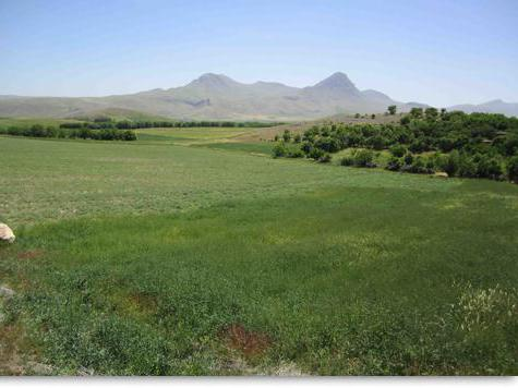agricultural grounds