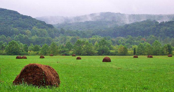 farmland is