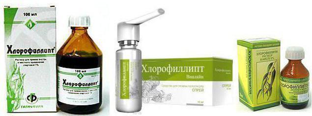 хлорофиллипт при беременности