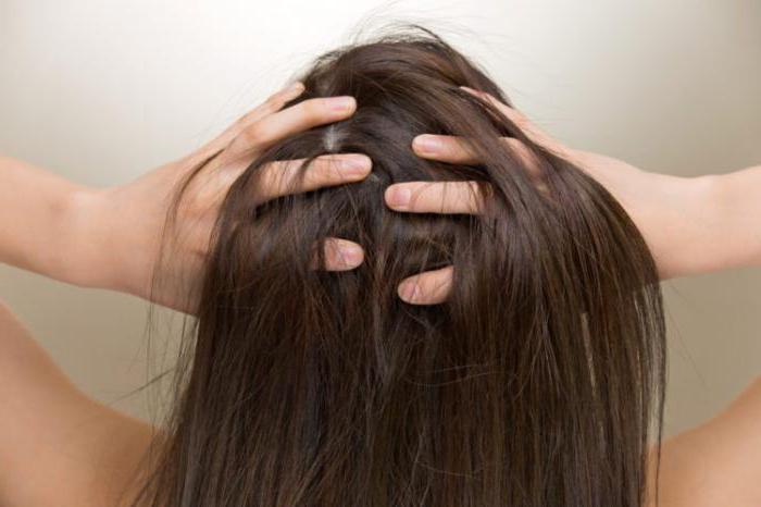 красить волосы на грязные или чистые волосы