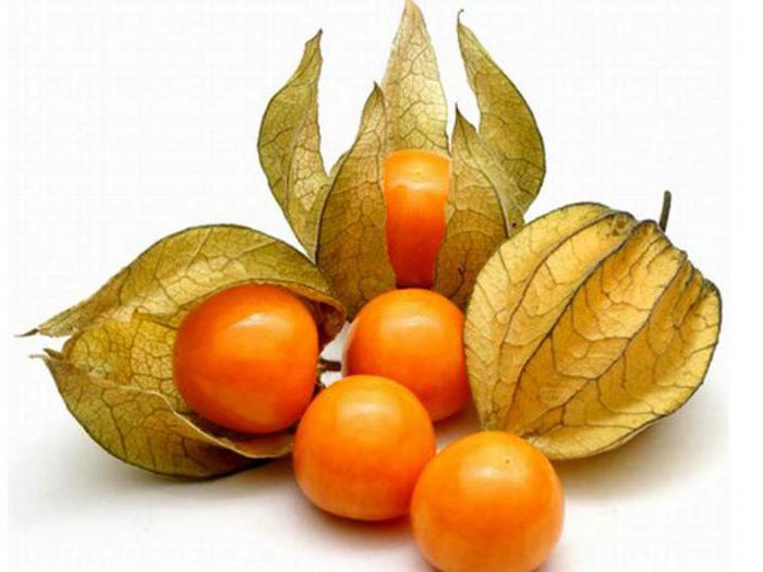 что за фрукт физалис