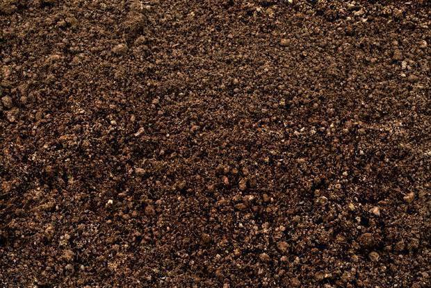 Структура почв