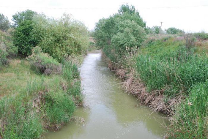 река кума уровень воды