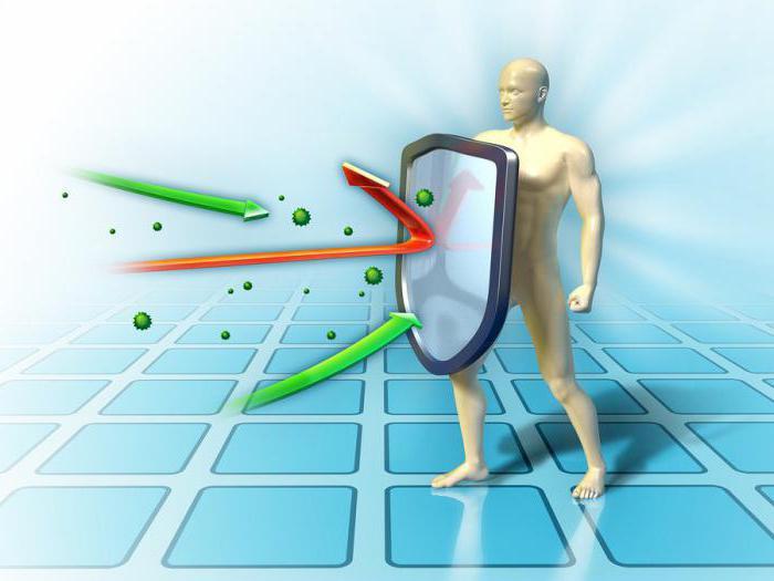 аденоиды гланды миндалины какая разница