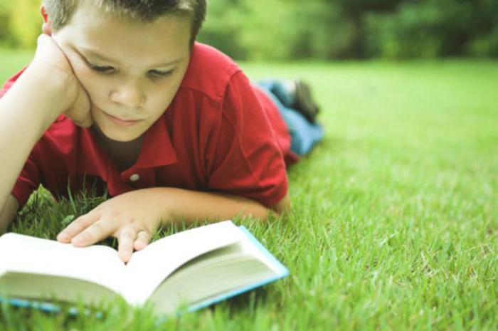 write an essay about a book