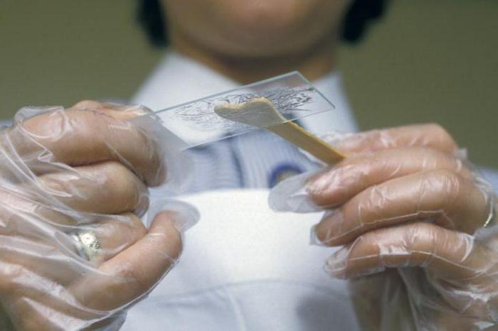Можно ли забеременеть при эрозии шейки матки: советы гинеколога