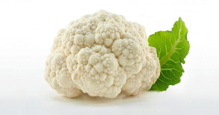 Planting cauliflower in open ground