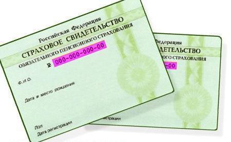 Где получают СНИЛС в СПб: адреса и отзывы