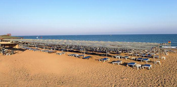 caretta beach club hotel 4 reviews