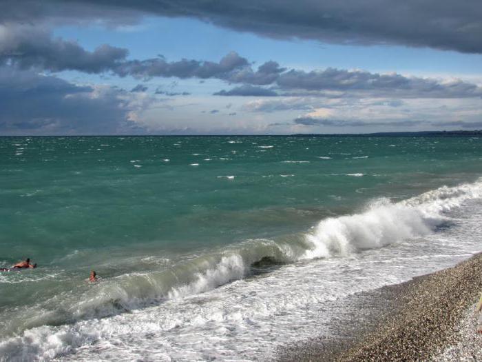 Abkhazia private sector on the coast