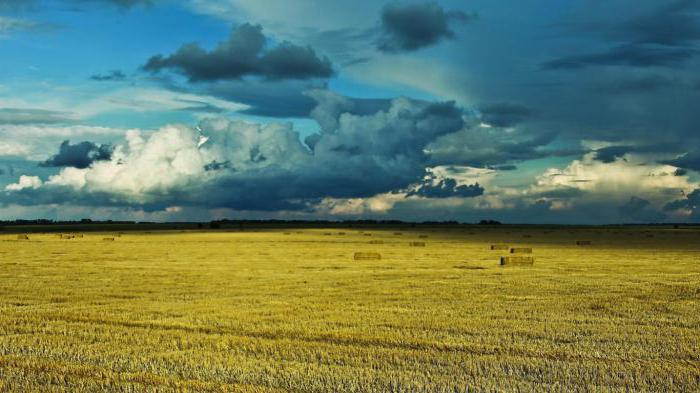 soil steppe natural area