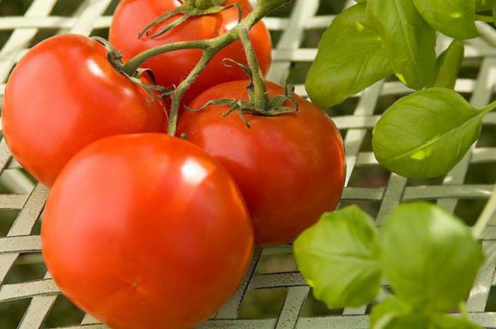 what vitamins in cucumbers and tomatoes